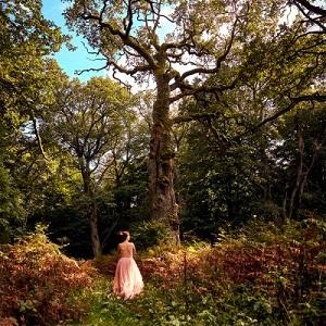 [Bild: wanderingtrees.jpg]